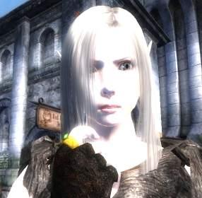 Oblivion_20070903_11421217