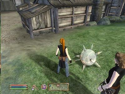Oblivion_20080426_00423051